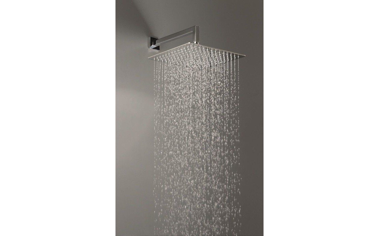 Spring SQ-600 Top-Mounted Shower Head picture № 0